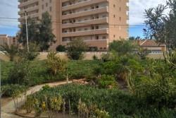 Просторные апартаменты в Ла Мата